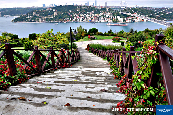 ve-may-bay-di-instanbul-8