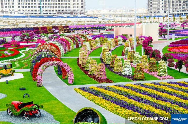 Den thanh pho giau co nhat o Trung Dong voi ve Ha Noi di Dubai