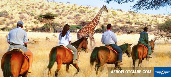 Vé máy bay đi Kenya giá rẻ từ Hà Nội