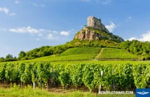 Những vườn nho nổi tiếng nhất Bordeaux nước Pháp