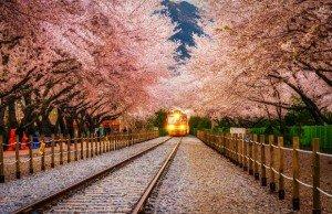 Hàn Quốc và những cảnh quan đẹp như tranh vẽ